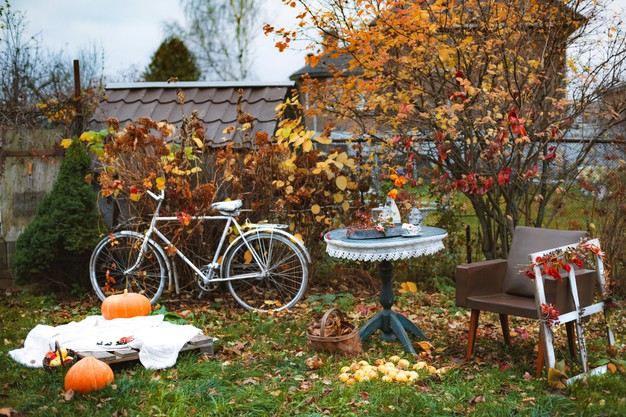 What to Do With Yard Waste – Tips & Advice